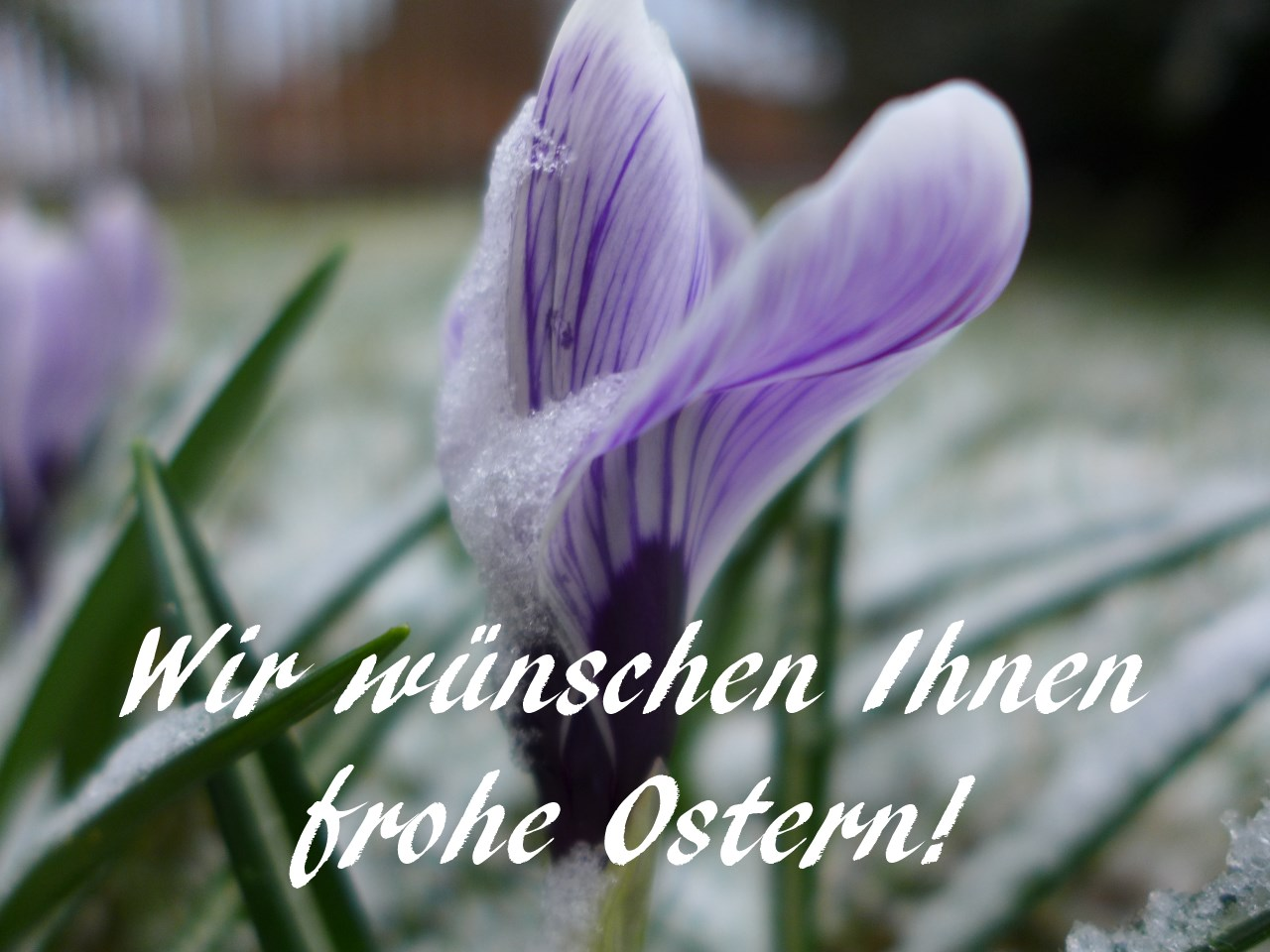Ostern_2015